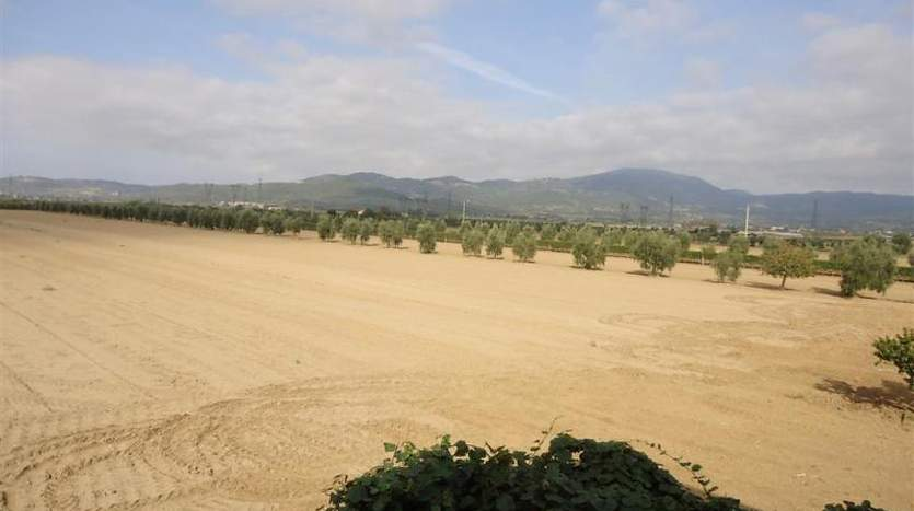 suvereto-livorno-tuscany-farmagricultural-land-for-sale