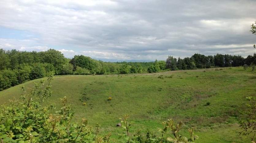 montaione-florence-tuscany-farmagricultural-land-for-sale