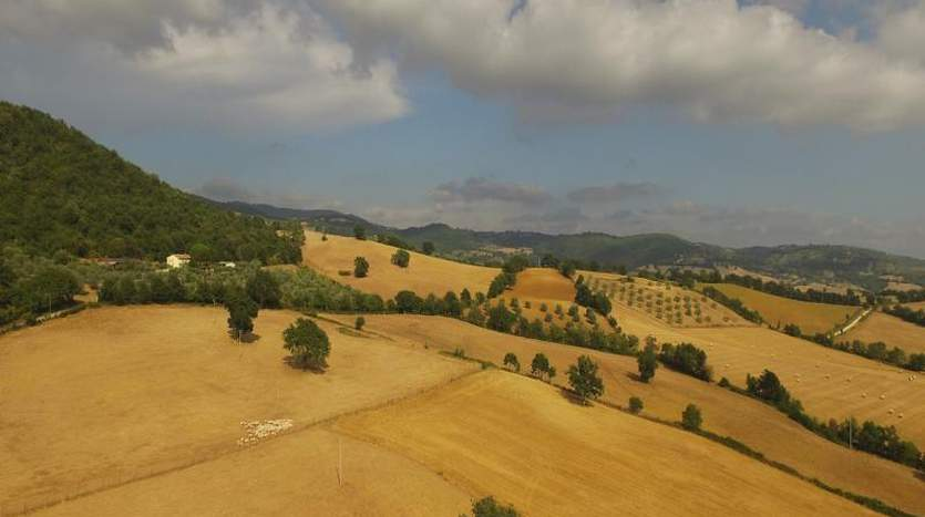 manciano-grosseto-tuscany-farmagricultural-land-for-sale