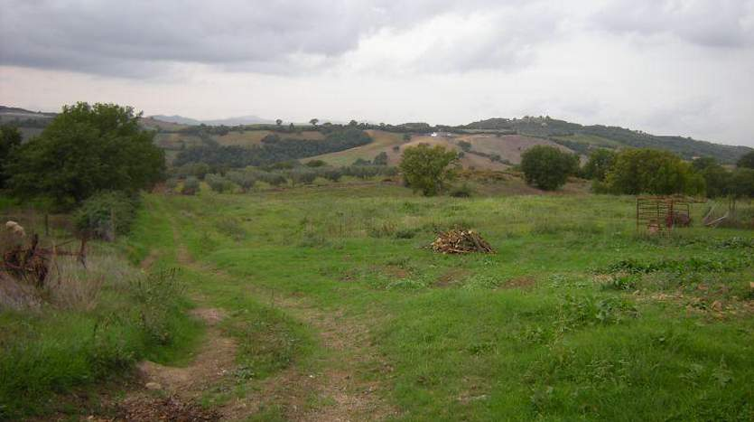 civitella-paganico-grosseto-tuscany-farmagricultural-land-for-sale